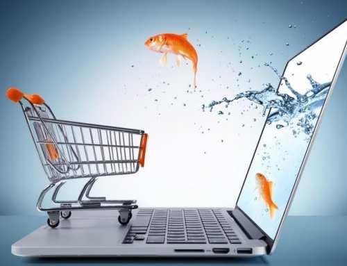Внутренняя оптимизация интернет-магазина: пошаговая инструкция