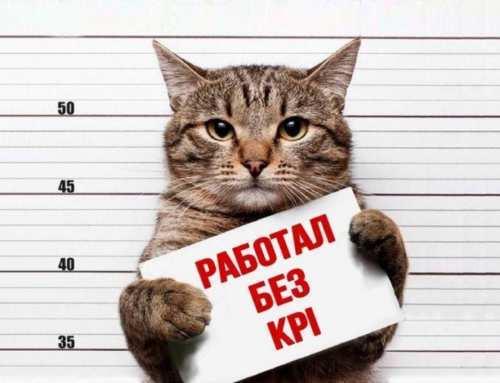 KPI в SEO: 11 ключевых показателей или как отслеживать результаты